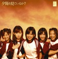 Yuuhi wo Miteiru ka? (夕陽を見ているか?) (CD Limited Edition) Cover