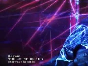 THE SOUND BEE HD - again (PV)